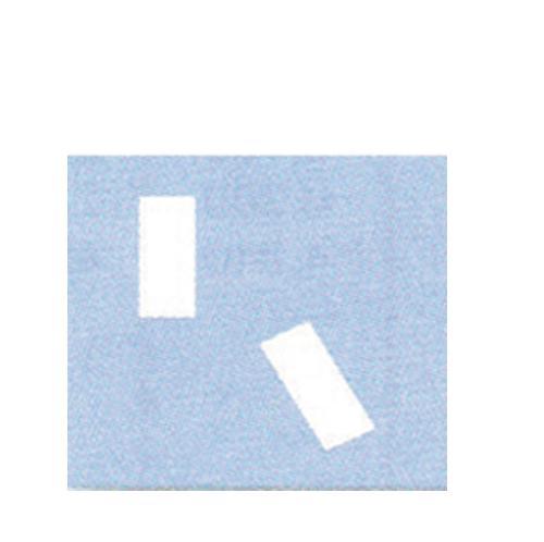 ΦΙΓΟΥΡΟΚΟΠΤΗΣ (ΠΕΝΣΑΚΙ) 2356